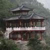 tangfangwen447
