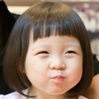 豌豆太阳花